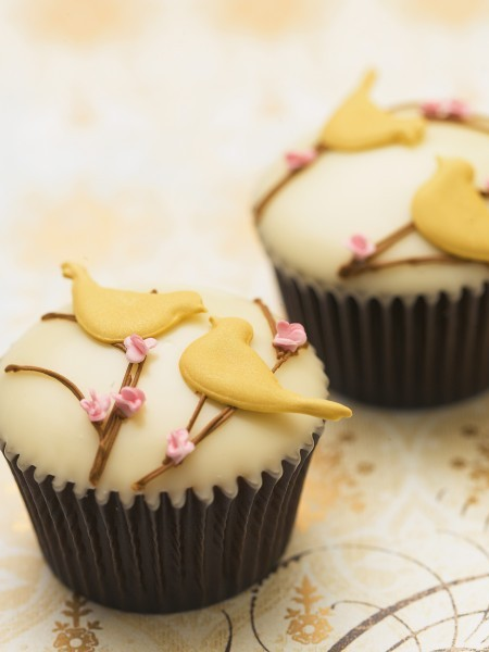 Bird and blossom cupcakes