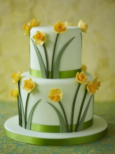Daffodil engagement cake