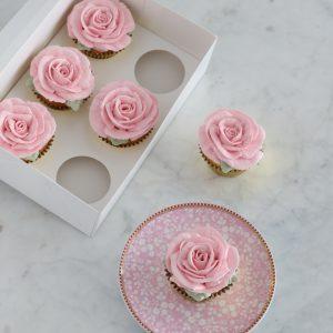 Cupcakes Sunshine Coast